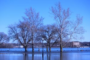 Davenport, Iowa: Early Flooding 2019