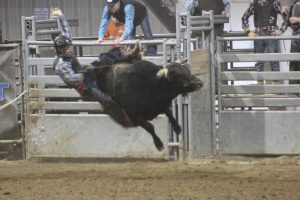 R and R Rodeo. Green River, WY